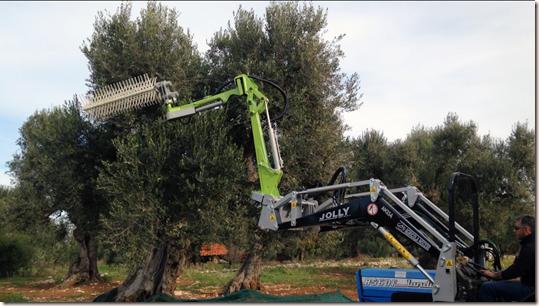 Pettine Spazzola Per Raccolta Olive Twister D16 D Amico Officine Ostuni Brindisi In Puglia Realizzazione E Costruzione Macchinari Agricoli E Piattaforme Aeree